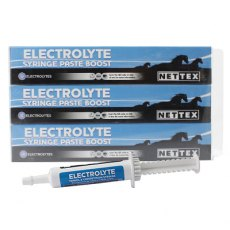 Net-Tex Electrolyte Syringe Paste Boost