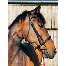 ECORIDER EVENTAIR GRACKLE BRIDLE BLACK OR BROWN COB OR FULL ECO 015 AIR