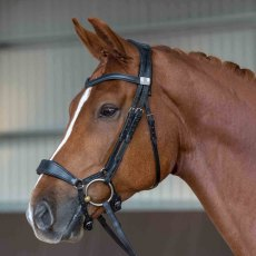 Fairfax Noseband - Drop ( inc 2 pads )