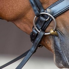 Fairfax Jowl Strap - for Crank Noseband
