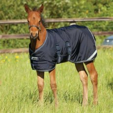 Amigo Foal Rug 200g *END OF LINE*