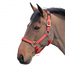 Shires Topaz Nylon Head Collar