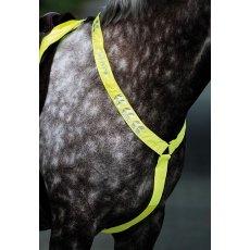 HyVIZ Hi-Vis Reflective Flourescent Bridle Set Browband//Cheek Yellow//Pink 1 Size