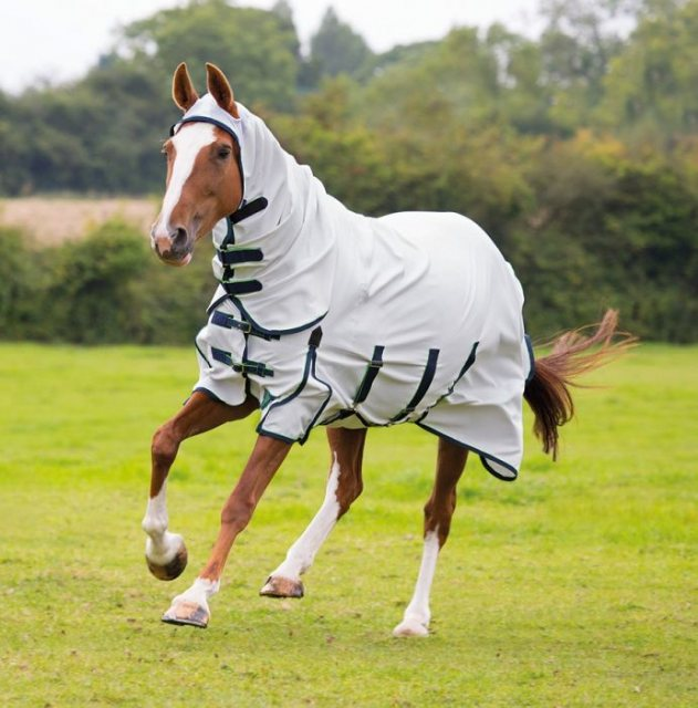 Shires Sweet Itch Combo