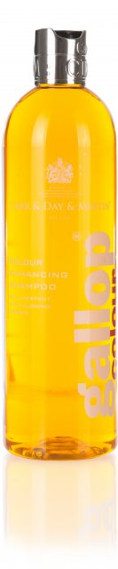 Carr & Day & Martin Carr & Day & Martin Gallop Colour Enhancing Shampoo - Chestnut & Palomino