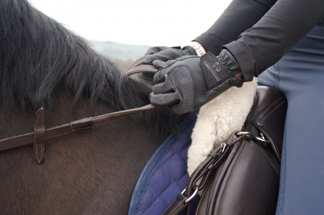 Cameo Equine Cameo Equine Competition Gloves