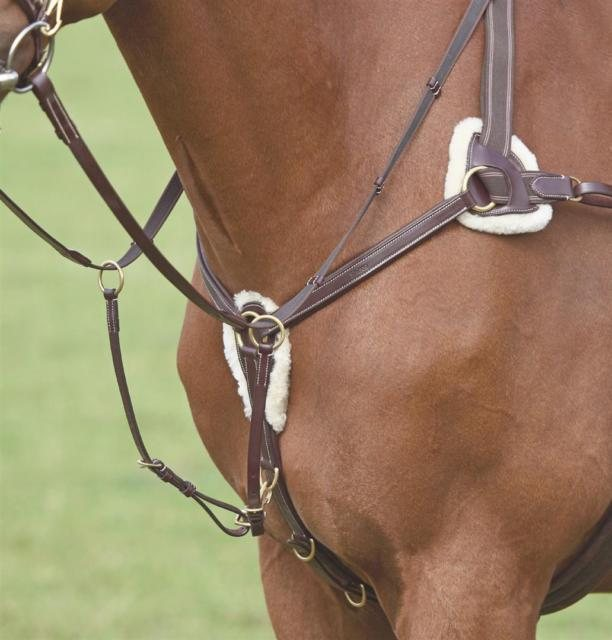 Shires Shires Salisbury Five Point Breastplate