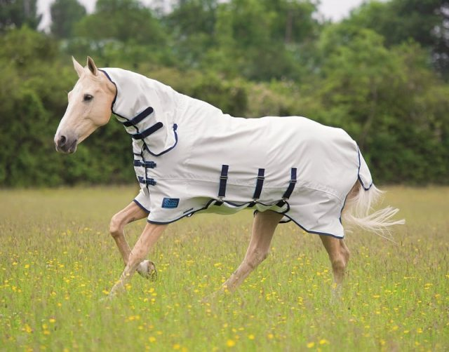 Shires Tempest Sweet Itch Combo